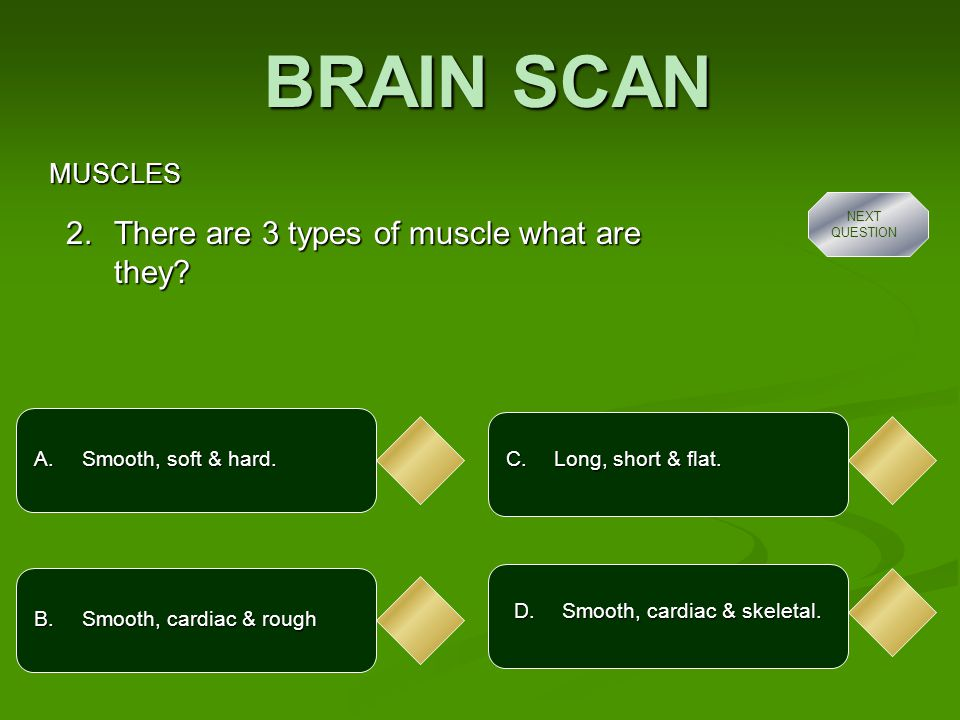 BRAIN SCAN MUSCLES A.It's the biggest muscle in the body.