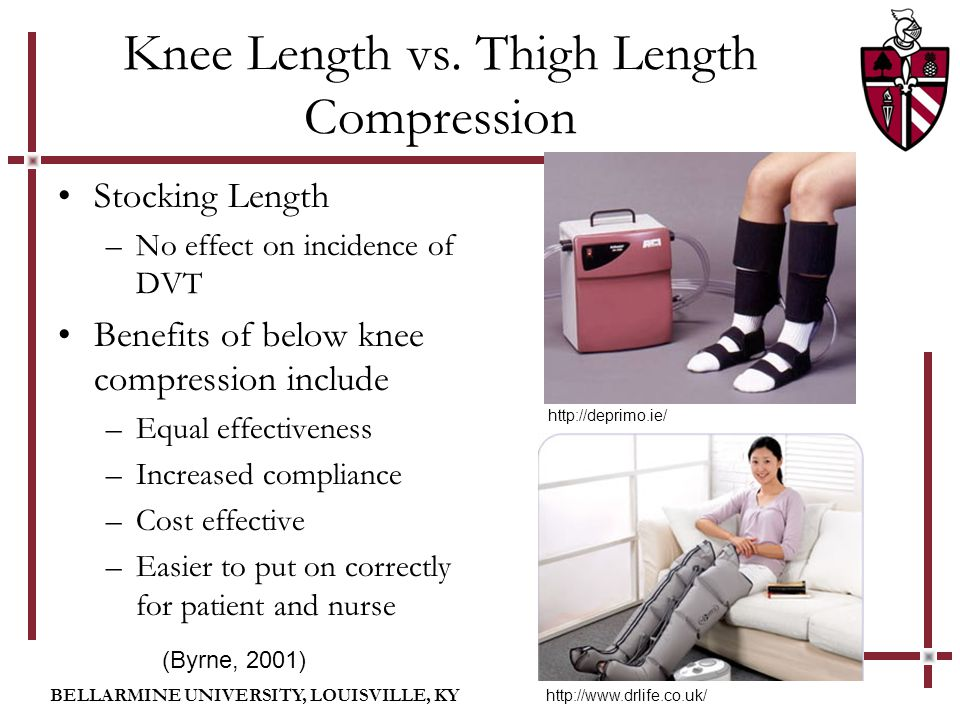 BELLARMINE UNIVERSITY, LOUISVILLE, KY Knee Length vs. Thigh Length Compression Stocking Length –No effect on incidence of DVT Benefits of below knee c