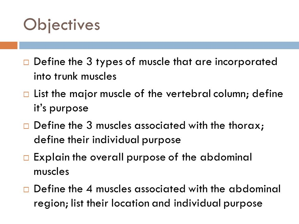 Objectives  Define the 3 types of muscle that are incorporated into trunk muscles  List the major muscle of the vertebral column; define it's purpos