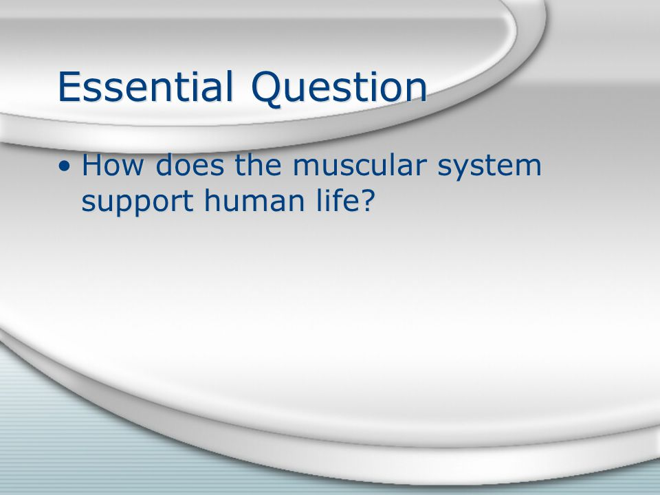 Skeletal Muscle Movement Eversion ~ turning the sole of the foot outward.