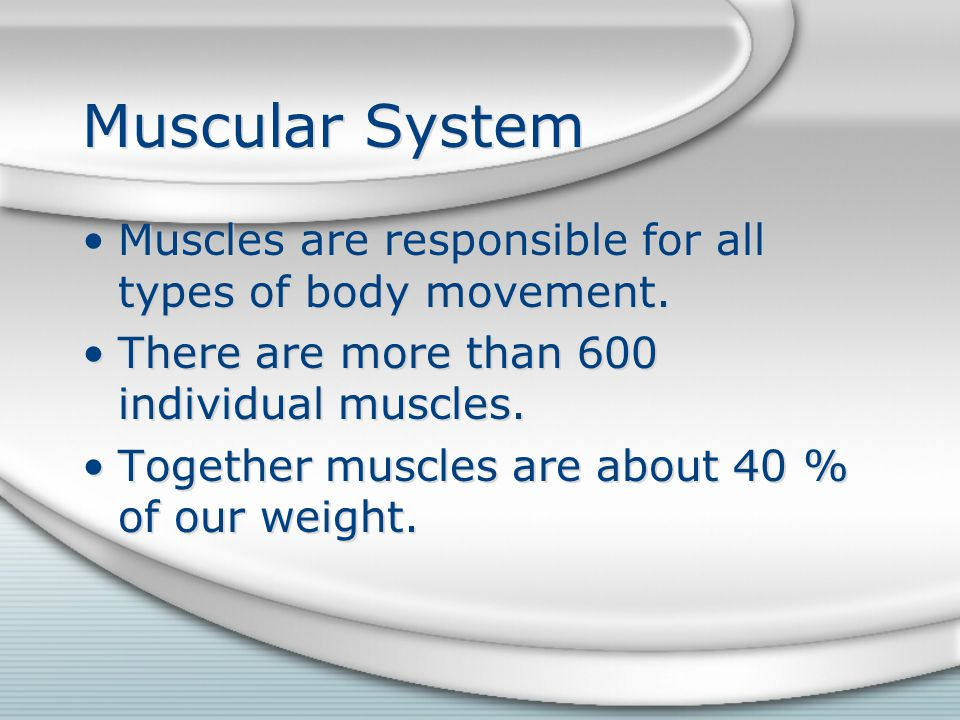 Muscular System Three types of muscle –Skeletal –Smooth –Cardiac Three types of muscle –Skeletal –Smooth –Cardiac
