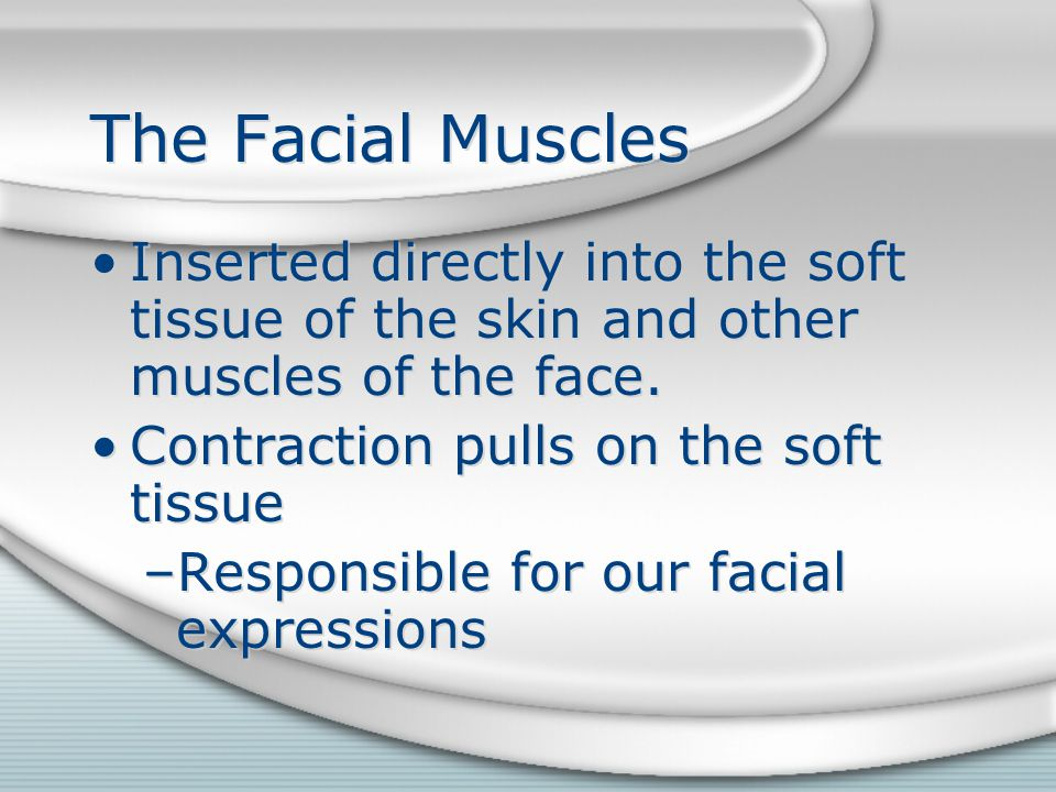 The Facial Muscles Inserted directly into the soft tissue of the skin and other muscles of the face. Contraction pulls on the soft tissue –Responsible