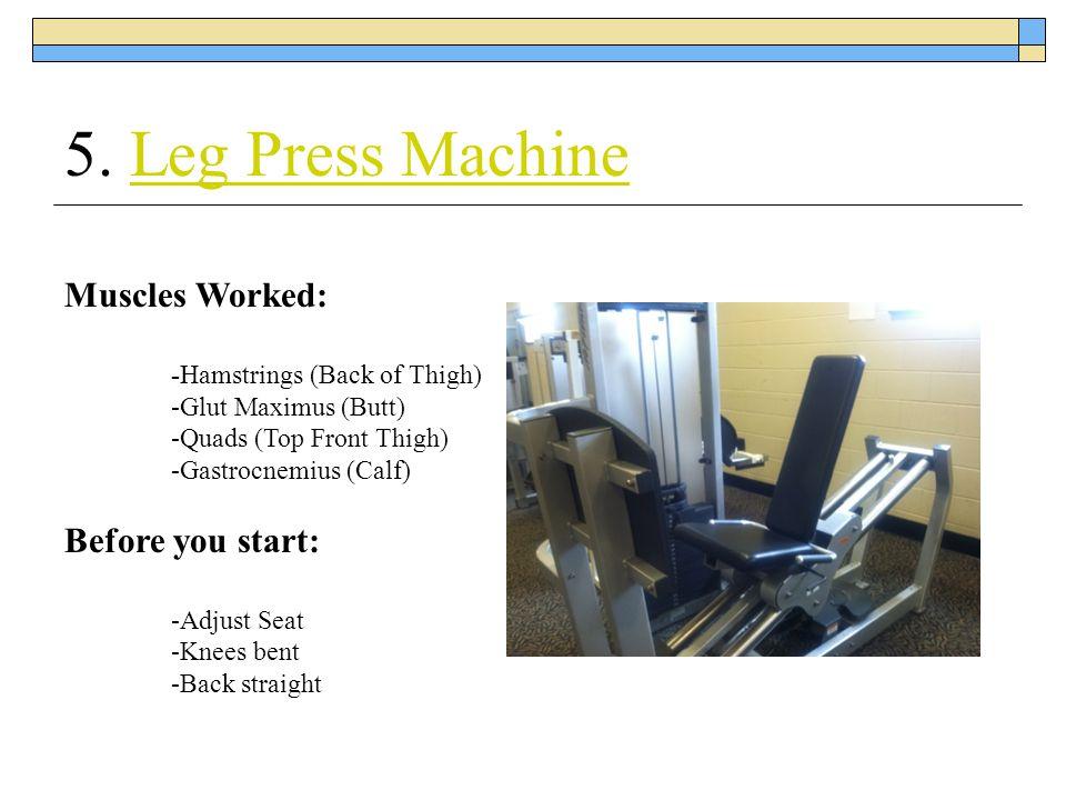 5. Leg Press MachineLeg Press Machine Muscles Worked: -Hamstrings (Back of Thigh) -Glut Maximus (Butt) -Quads (Top Front Thigh) -Gastrocnemius (Calf)