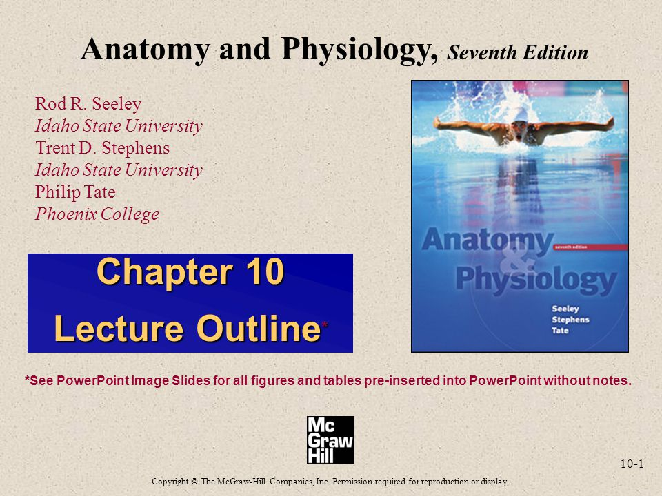 10-1 Anatomy and Physiology, Seventh Edition Rod R. Seeley Idaho State University Trent D. Stephens Idaho State University Philip Tate Phoenix College