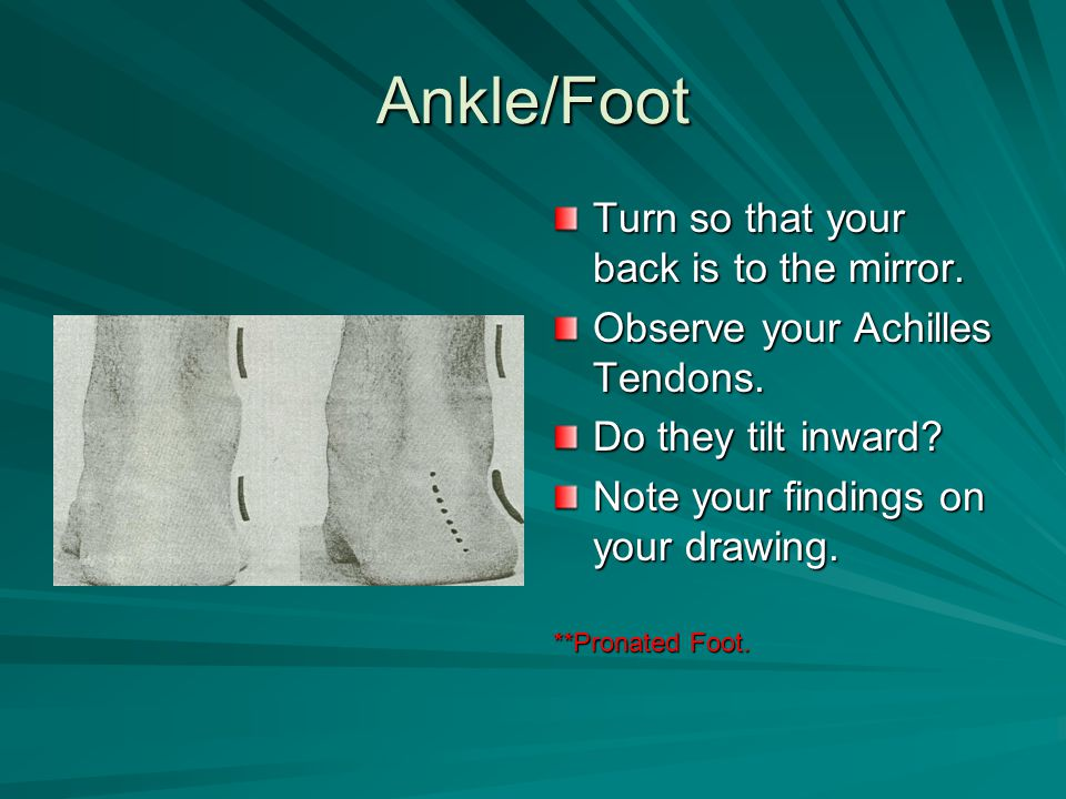 Ankle/Foot Turn so that your back is to the mirror. Observe your Achilles Tendons. Do they tilt inward? Note your findings on your drawing. **Pronated