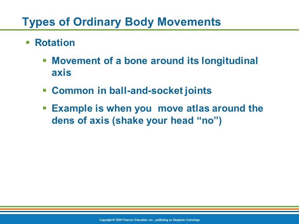 Copyright © 2009 Pearson Education, Inc., publishing as Benjamin Cummings Types of Ordinary Body Movements  Rotation  Movement of a bone around its