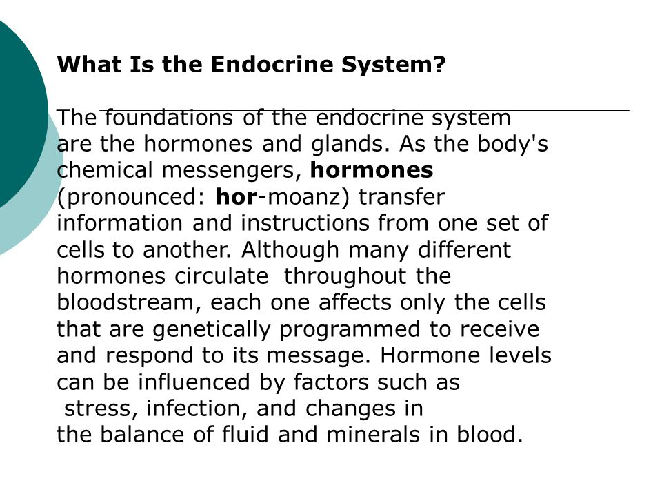 What Is the Endocrine System. The foundations of the endocrine system are the hormones and glands.