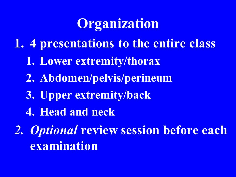 Organization 1.4 presentations to the entire class 1.Lower extremity/thorax 2.Abdomen/pelvis/perineum 3.Upper extremity/back 4.Head and neck 2.Optiona