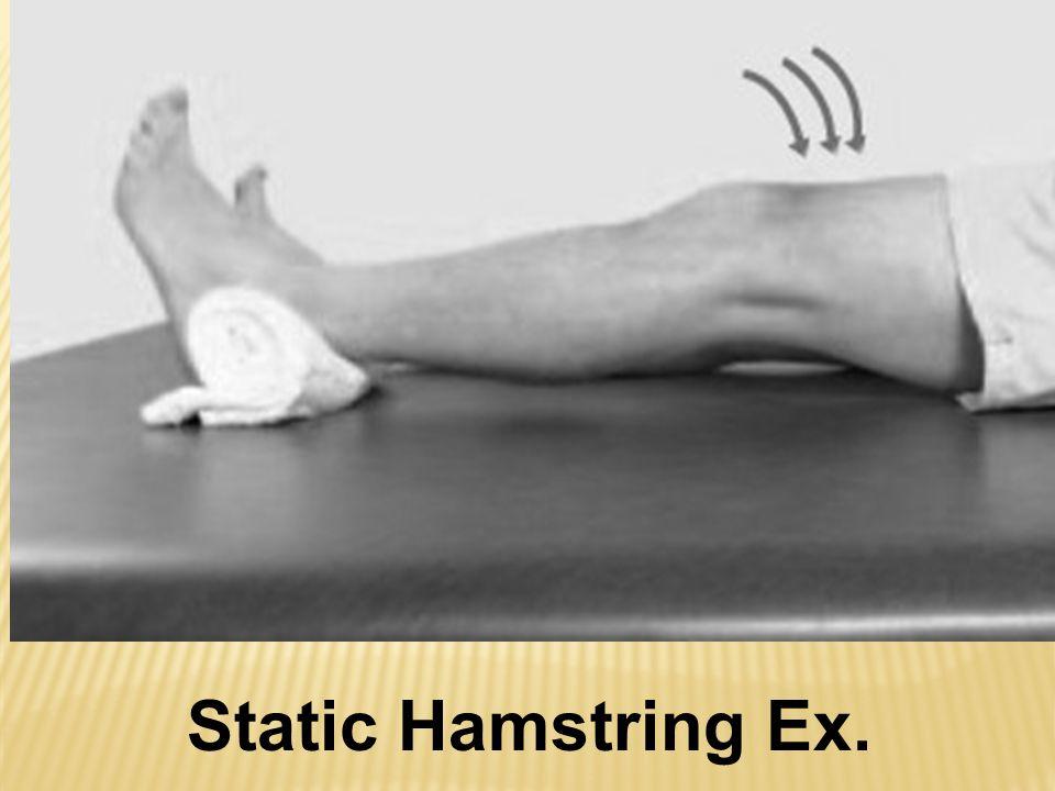 Static Hamstring Ex.