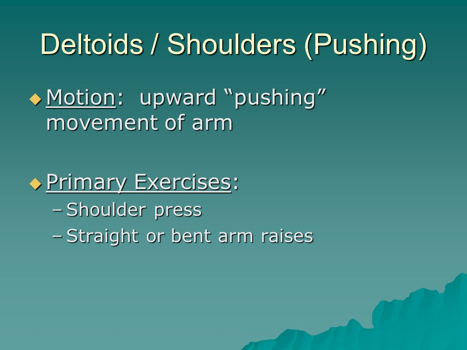 Deltoids / Shoulders (Pushing)  Motion: upward pushing movement of arm  Primary Exercises: –Shoulder press –Straight or bent arm raises