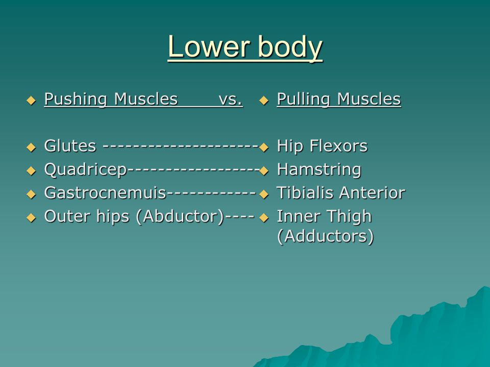 Lower body  Pushing Muscles vs.