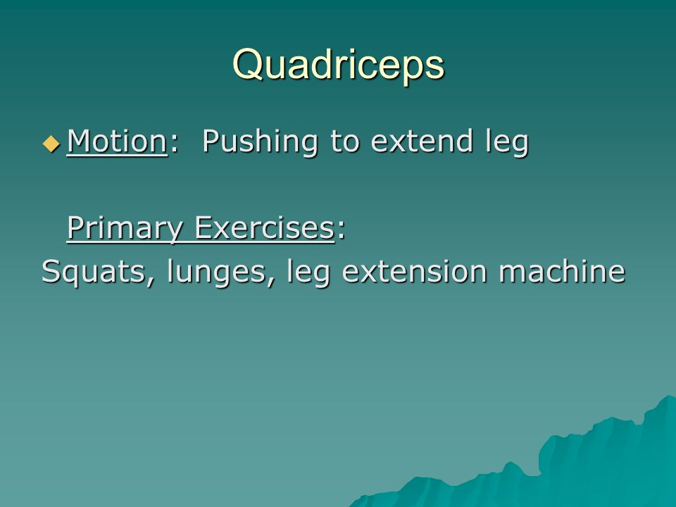 Quadriceps  Motion: Pushing to extend leg Primary Exercises: Squats, lunges, leg extension machine