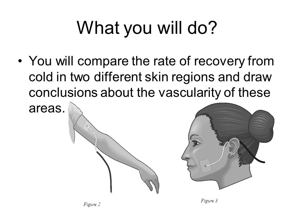 What you will do? You will compare the rate of recovery from cold in two different skin regions and draw conclusions about the vascularity of these ar