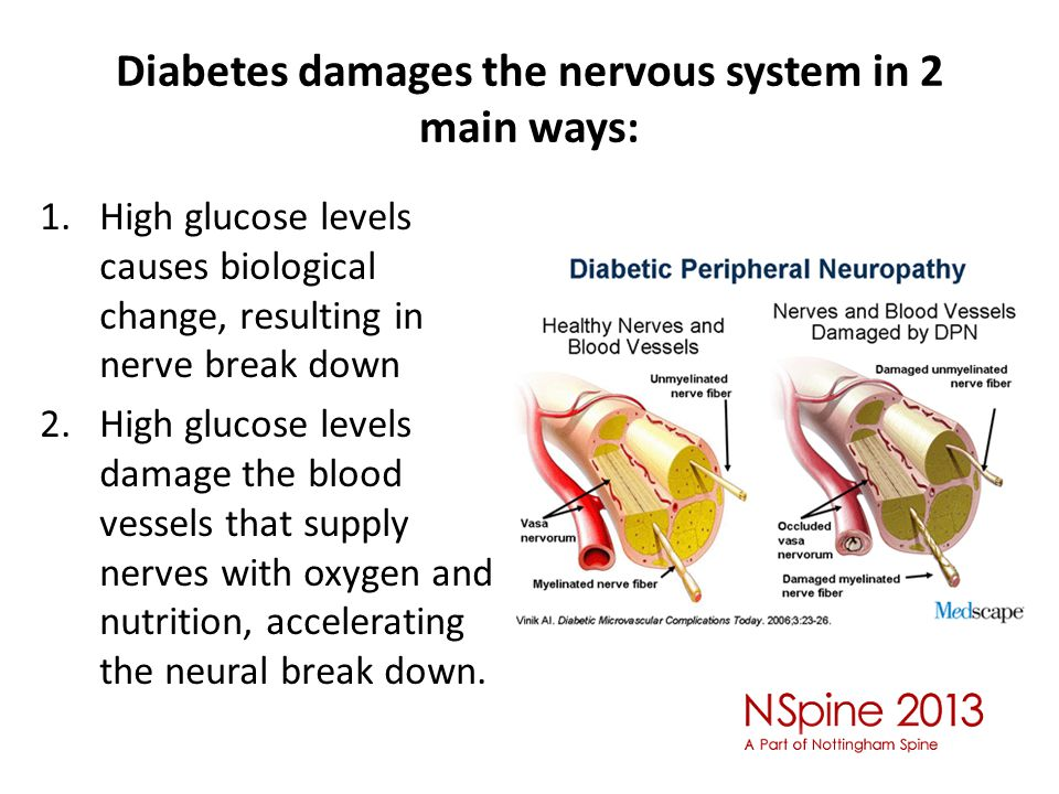 Diabetes damages the nervous system in 2 main ways: 1.High glucose levels causes biological change, resulting in nerve break down 2.High glucose levels damage the blood vessels that supply nerves with oxygen and nutrition, accelerating the neural break down.
