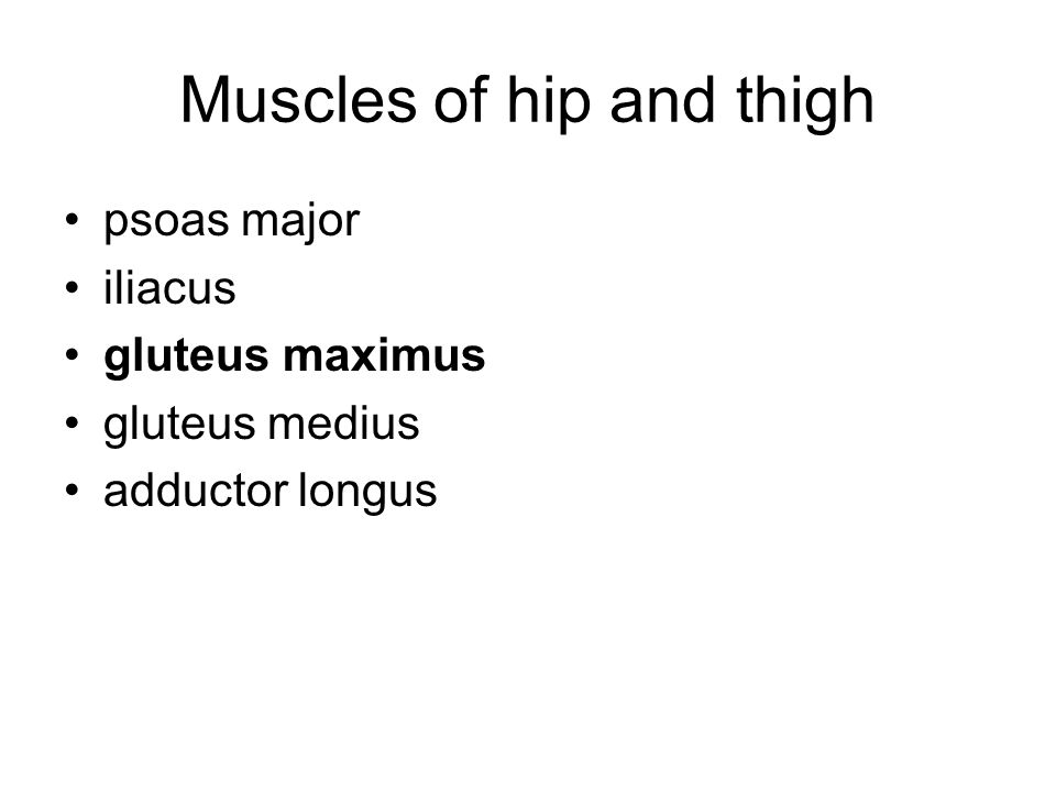 Gluteal Muscles (1 of 2) Cover lateral surfaces of ilia Gluteus maximus: –largest, most posterior gluteal muscle –produces extension and lateral rotation at hip –Originates on illiac crest, etc., inserts on illiotibial tract and femur