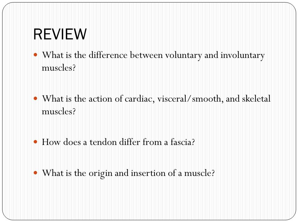REVIEW What is the difference between voluntary and involuntary muscles? What is the action of cardiac, visceral/smooth, and skeletal muscles? How doe