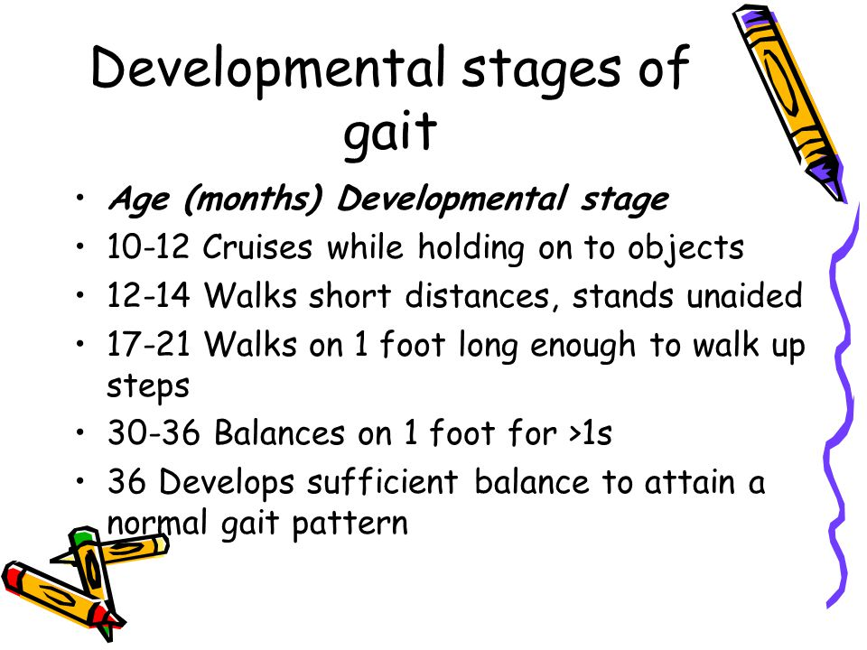Developmental stages of gait Age (months) Developmental stage 10-12 Cruises while holding on to objects 12-14 Walks short distances, stands unaided 17