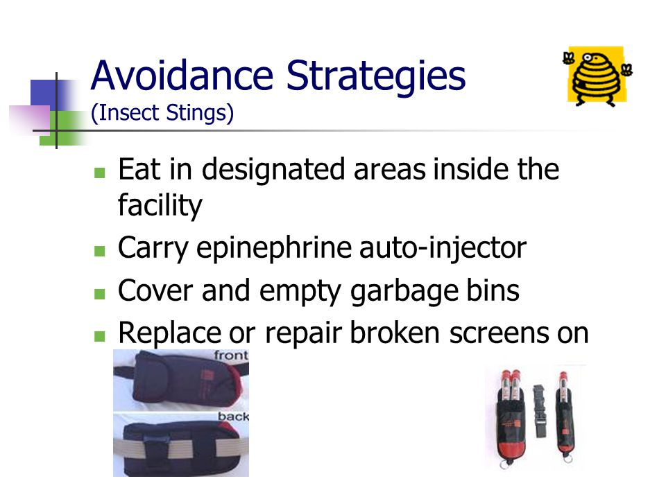 Avoidance Strategies (Insect Stings) Eat in designated areas inside the facility Carry epinephrine auto-injector Cover and empty garbage bins Replace or repair broken screens on windows