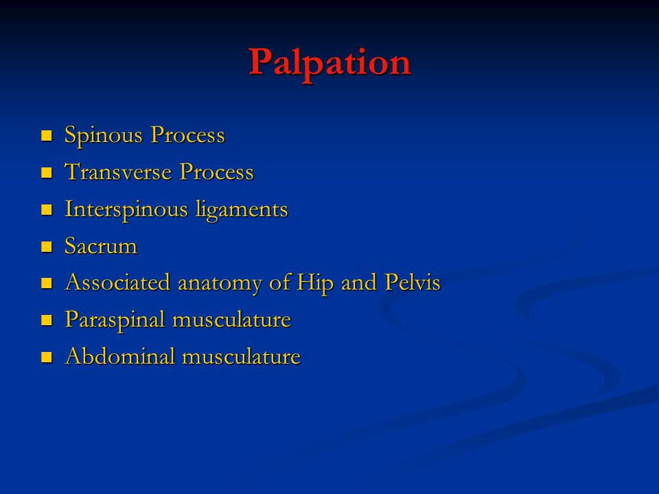 Palpation Spinous Process Spinous Process Transverse Process Transverse Process Interspinous ligaments Interspinous ligaments Sacrum Sacrum Associated anatomy of Hip and Pelvis Associated anatomy of Hip and Pelvis Paraspinal musculature Paraspinal musculature Abdominal musculature Abdominal musculature