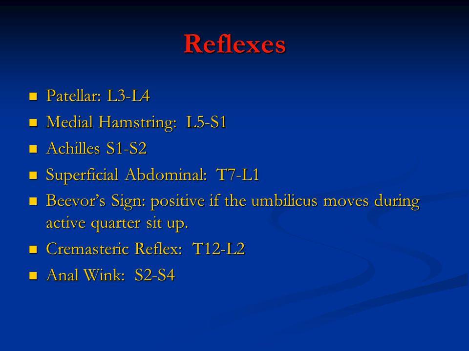 Reflexes Patellar: L3-L4 Patellar: L3-L4 Medial Hamstring: L5-S1 Medial Hamstring: L5-S1 Achilles S1-S2 Achilles S1-S2 Superficial Abdominal: T7-L1 Superficial Abdominal: T7-L1 Beevor's Sign: positive if the umbilicus moves during active quarter sit up.