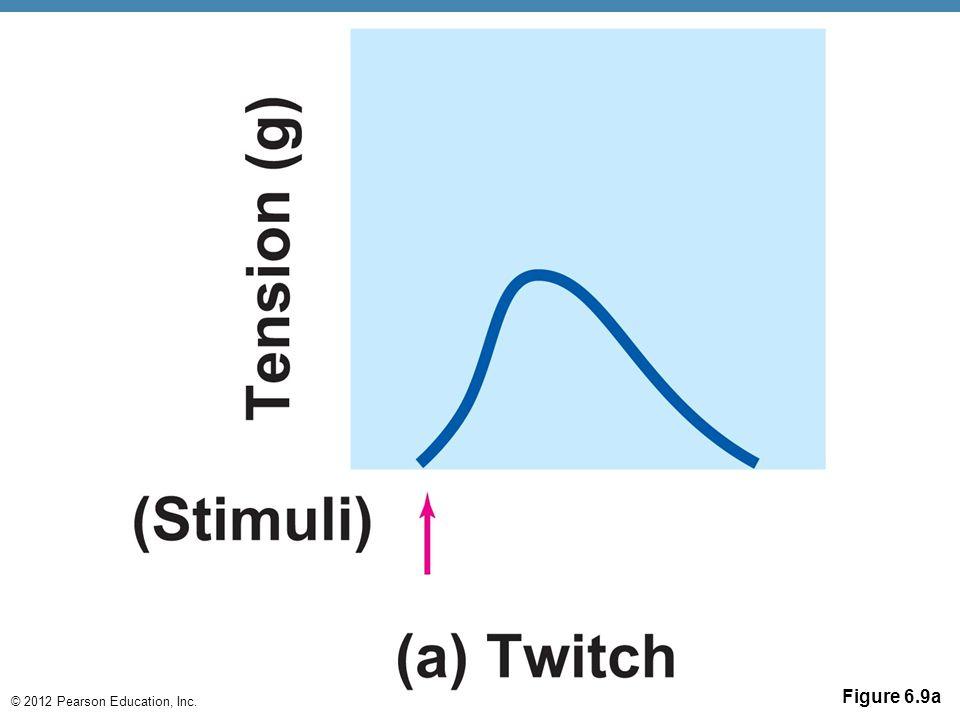 © 2012 Pearson Education, Inc. Figure 6.9a