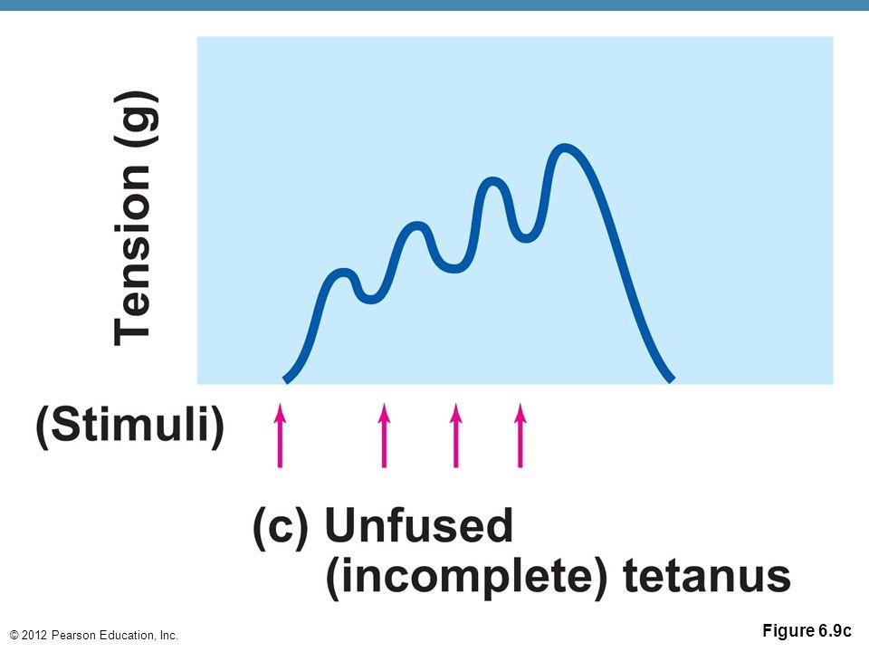 © 2012 Pearson Education, Inc. Figure 6.9c