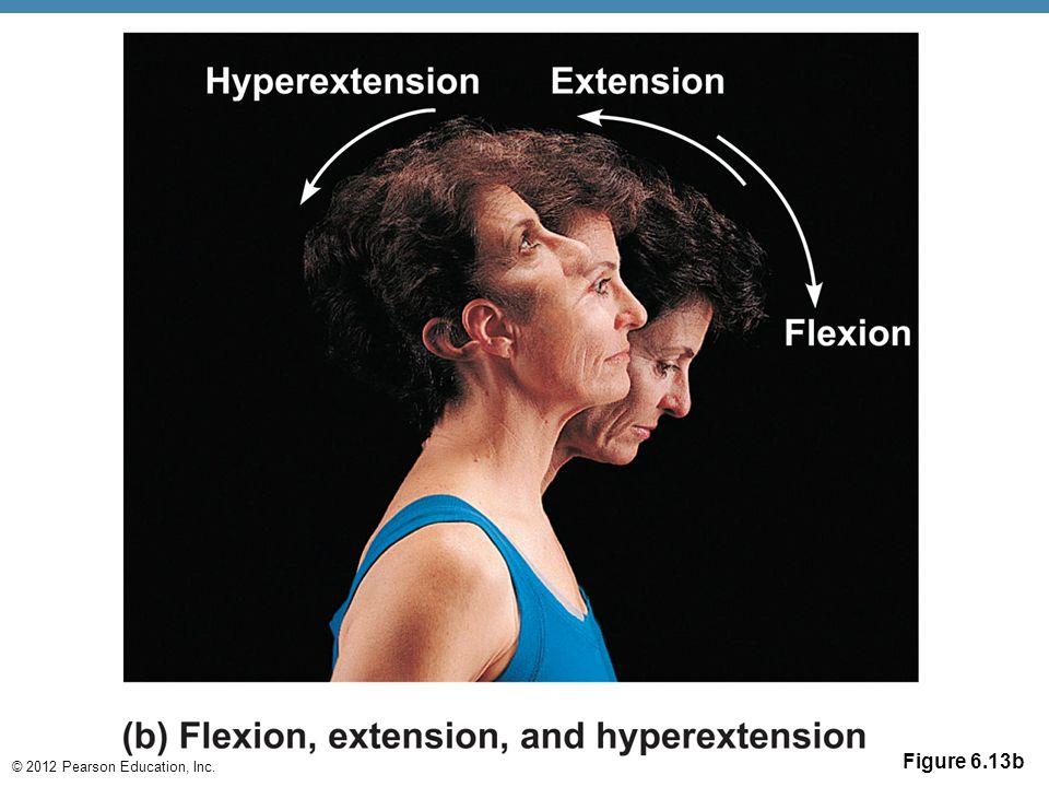 © 2012 Pearson Education, Inc. Figure 6.13b