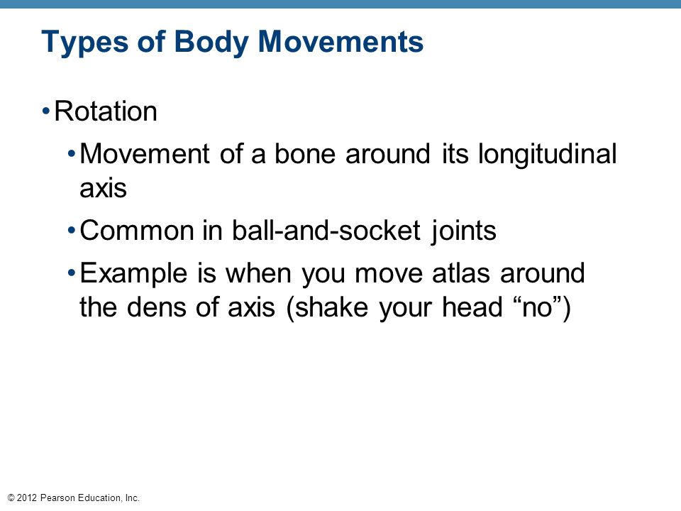 © 2012 Pearson Education, Inc. Types of Body Movements Rotation Movement of a bone around its longitudinal axis Common in ball-and-socket joints Examp