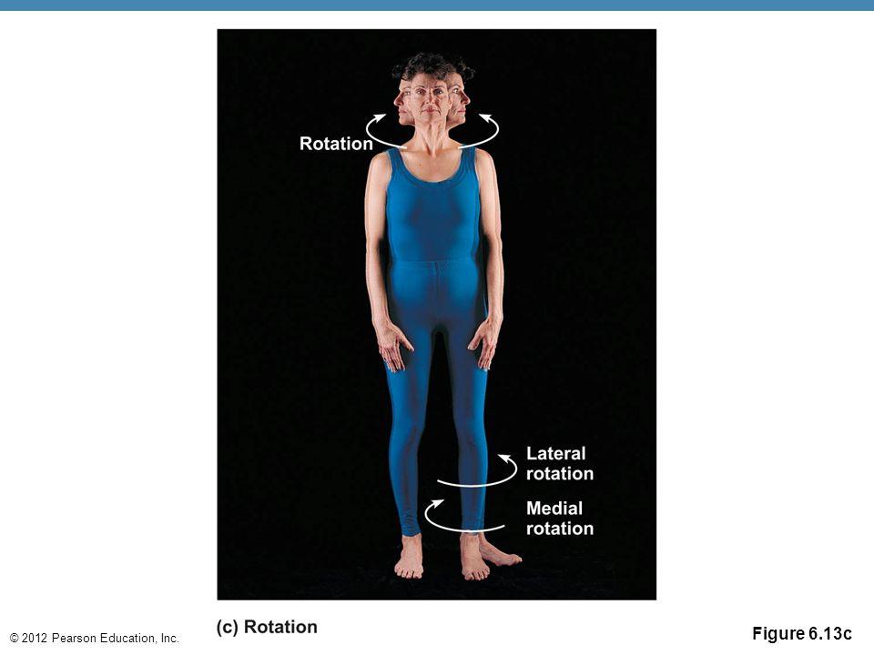© 2012 Pearson Education, Inc. Figure 6.13c