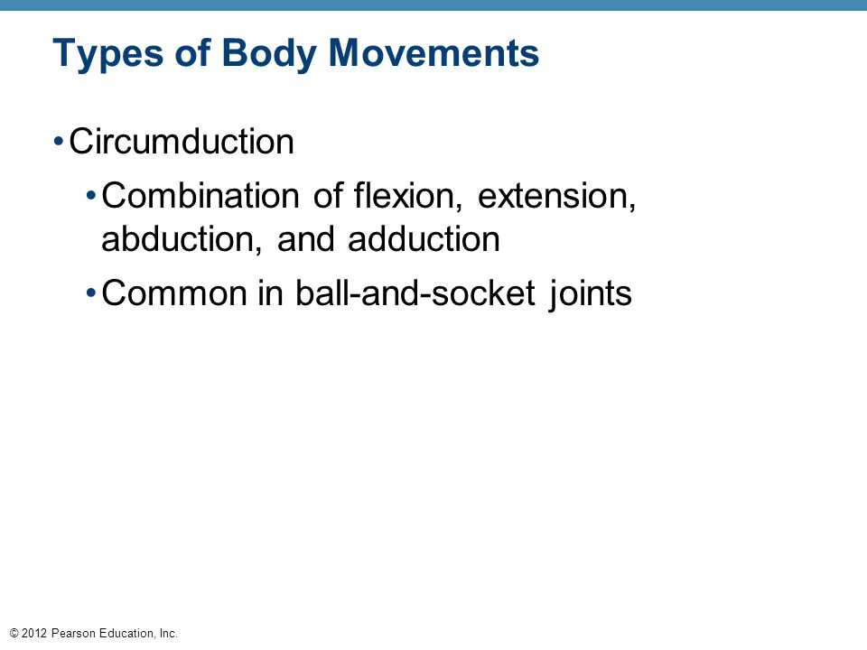 © 2012 Pearson Education, Inc. Types of Body Movements Circumduction Combination of flexion, extension, abduction, and adduction Common in ball-and-so