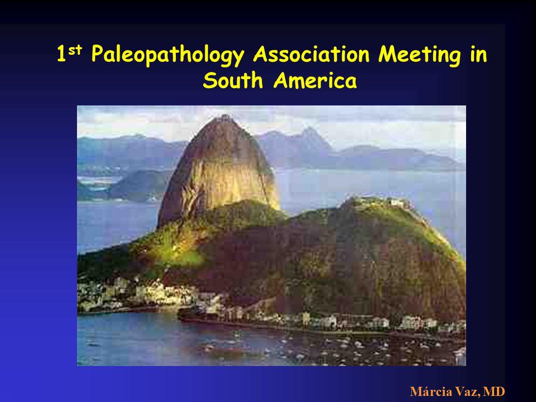 1 st Paleopathology Association Meeting in South America Foto rio Márcia Vaz, MD