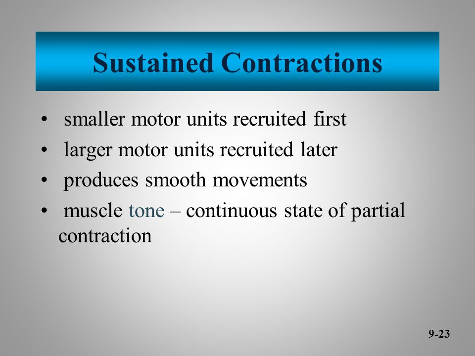 Sustained Contractions smaller motor units recruited first larger motor units recruited later produces smooth movements muscle tone – continuous state