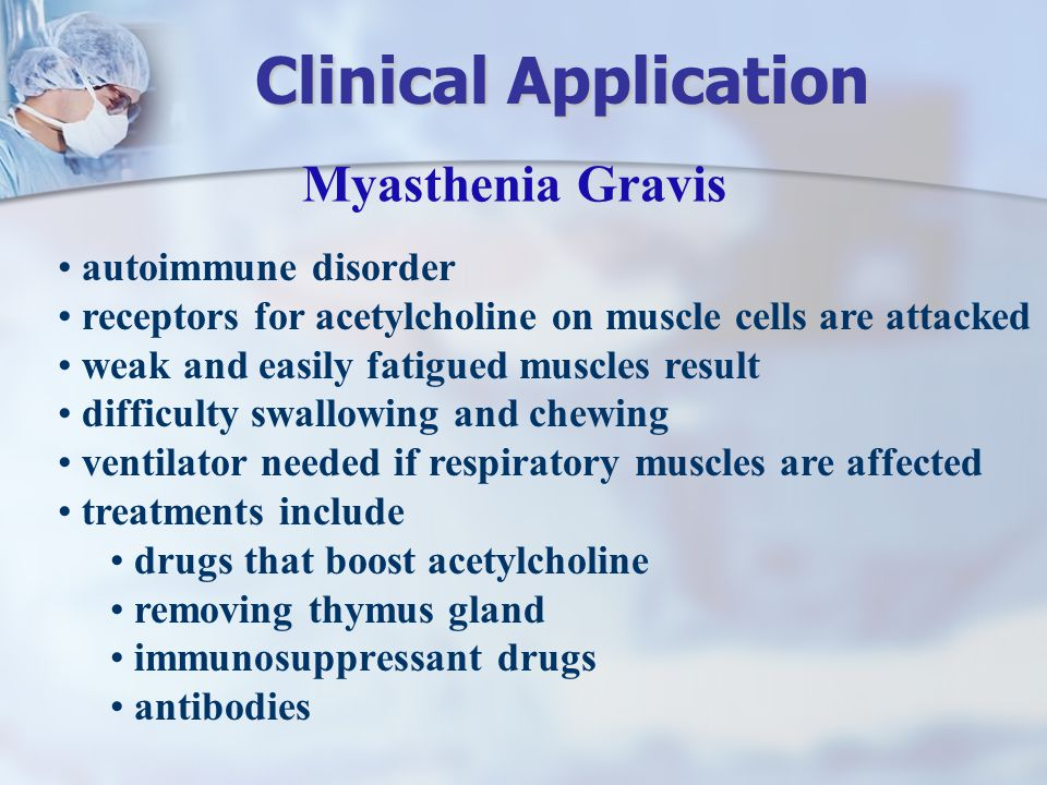 Myasthenia Gravis autoimmune disorder receptors for acetylcholine on muscle cells are attacked weak and easily fatigued muscles result difficulty swal