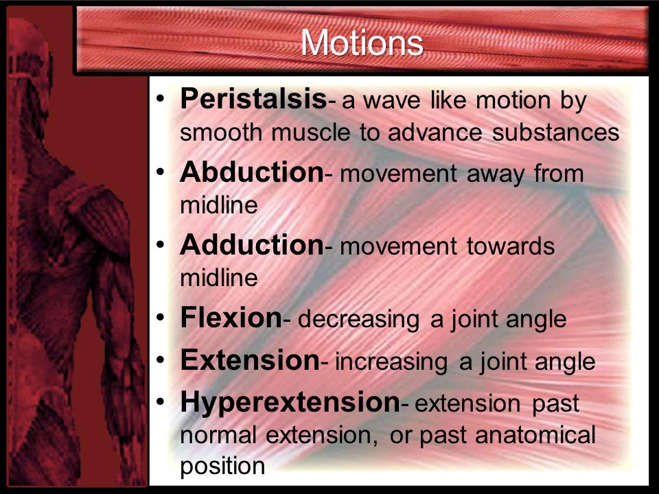 Motions Peristalsis - a wave like motion by smooth muscle to advance substances Abduction - movement away from midline Adduction - movement towards mi