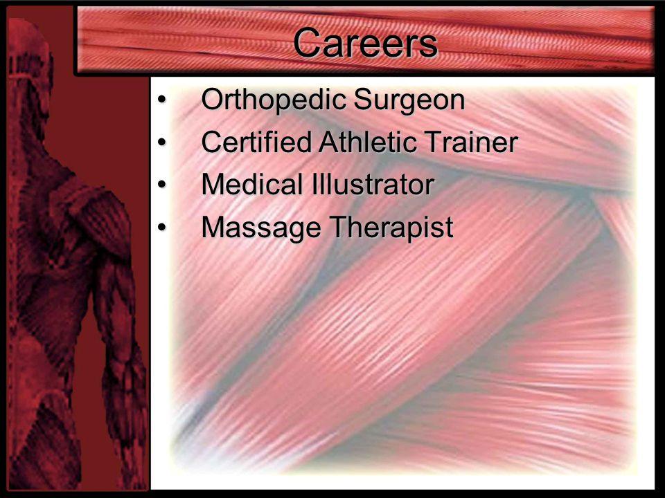 Careers Orthopedic SurgeonOrthopedic Surgeon Certified Athletic TrainerCertified Athletic Trainer Medical IllustratorMedical Illustrator Massage TherapistMassage Therapist