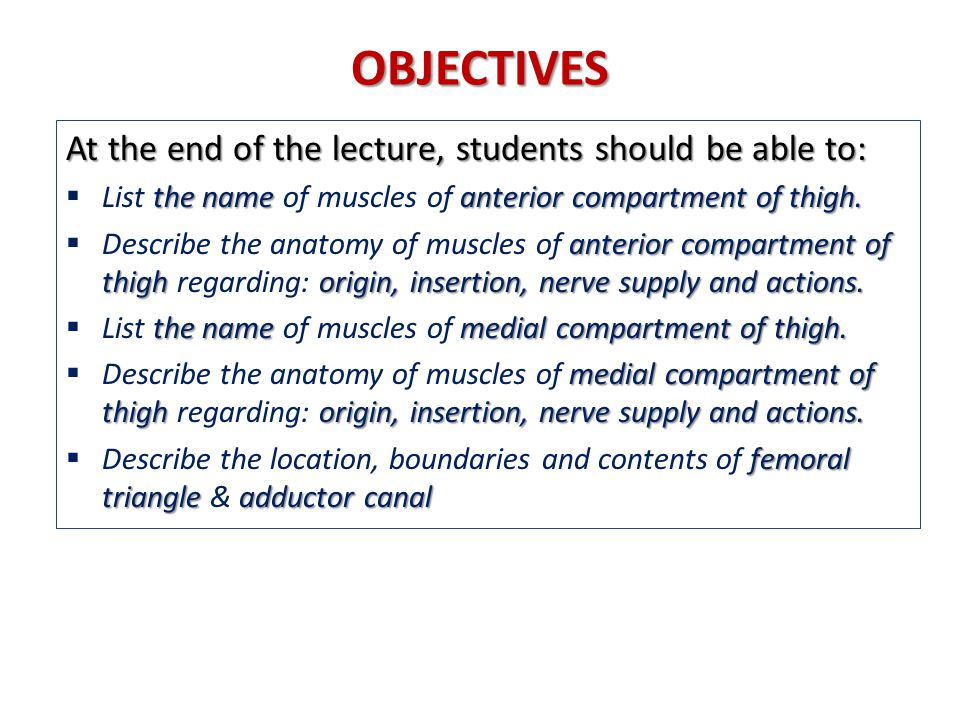 OBJECTIVES At the end of the lecture, students should be able to: the name anterior compartment of thigh.  List the name of muscles of anterior compa