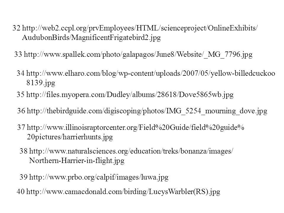 32 http://web2.ccpl.org/prvEmployees/HTML/scienceproject/OnlineExhibits/ AudubonBirds/MagnificentFrigatebird2.jpg 33 http://www.spallek.com/photo/galapagos/June8/Website/_MG_7796.jpg 34 http://www.elharo.com/blog/wp-content/uploads/2007/05/yellow-billedcuckoo 8139.jpg 35 http://files.myopera.com/Dudley/albums/28618/Dove5865wb.jpg 36 http://thebirdguide.com/digiscoping/photos/IMG_5254_mourning_dove.jpg 37 http://www.illinoisraptorcenter.org/Field%20Guide/field%20guide% 20pictures/harrierhunts.jpg 38 http://www.naturalsciences.org/education/treks/bonanza/images/ Northern-Harrier-in-flight.jpg 39 http://www.prbo.org/calpif/images/luwa.jpg 40 http://www.camacdonald.com/birding/LucysWarbler(RS).jpg