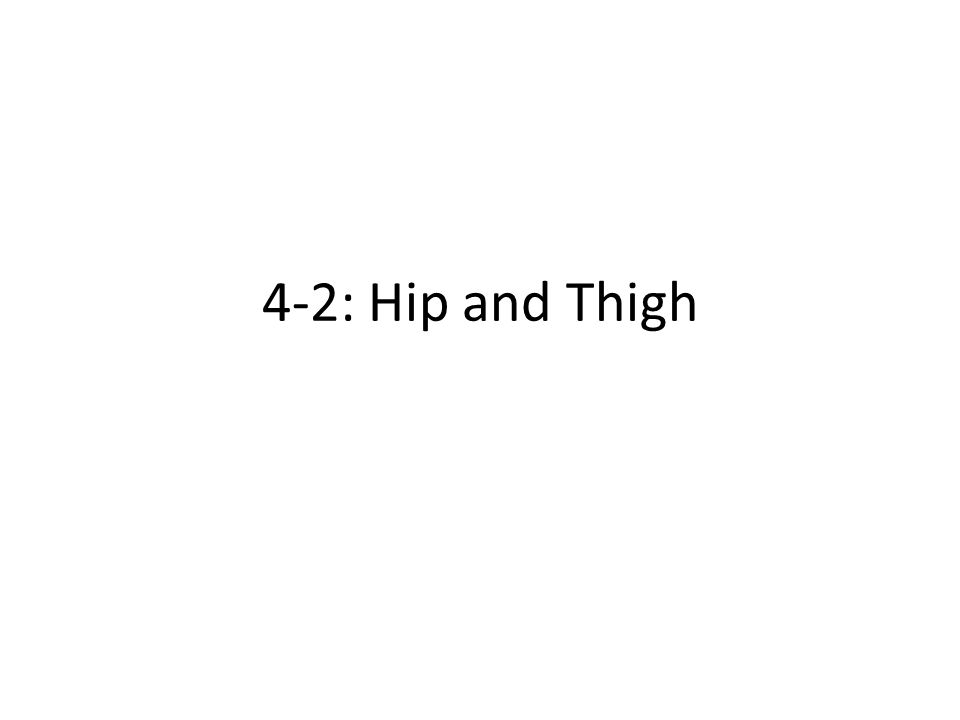 4-2: Hip and Thigh