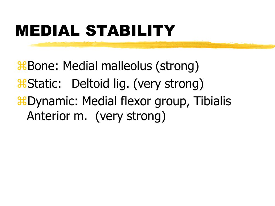 POSTERIOR STABILITY zBone: Nothing zStatic:posterior capsule (weak) zDynamic: Triceps surae (very strong)