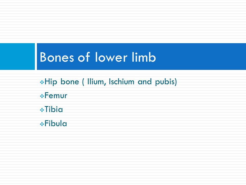 POWER REVIEW3. 6. The talus articulates with which 2 tarsal bones.