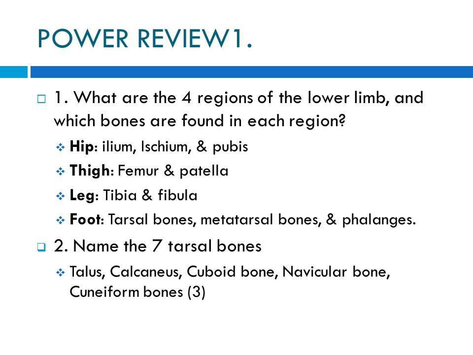 POWER REVIEW1.  1. What are the 4 regions of the lower limb, and which bones are found in each region?  Hip: ilium, Ischium, & pubis  Thigh: Femur