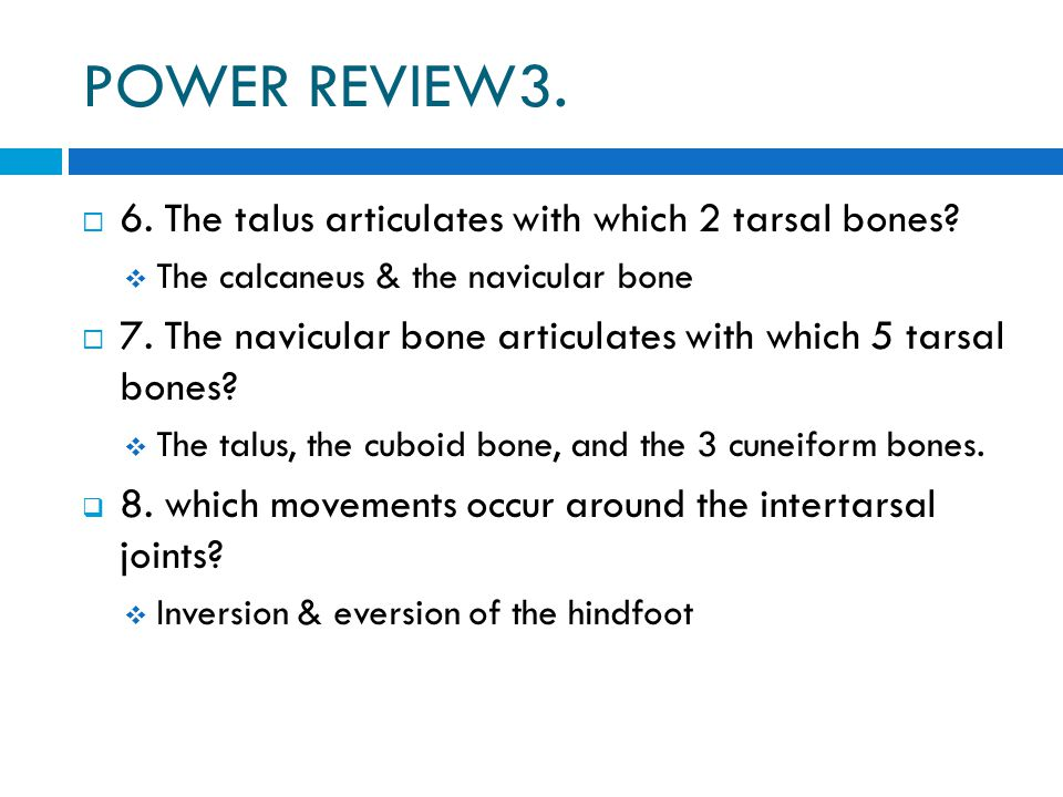 POWER REVIEW3.  6. The talus articulates with which 2 tarsal bones?  The calcaneus & the navicular bone  7. The navicular bone articulates with whi