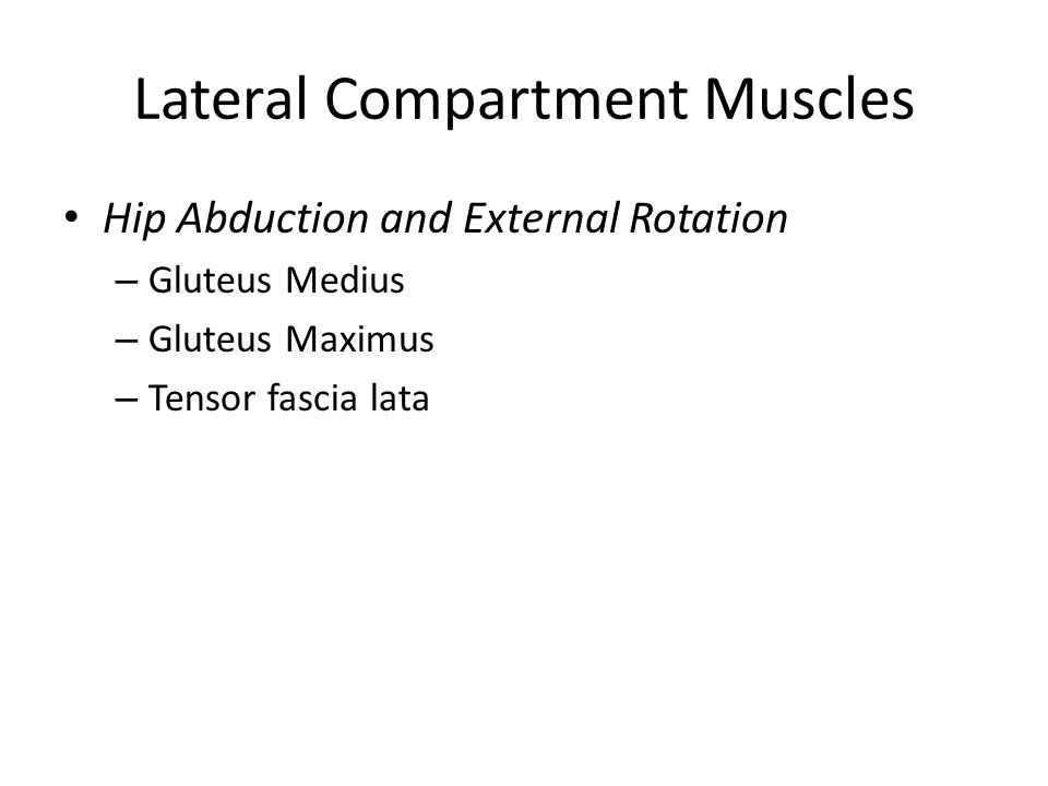 Lateral Compartment Muscles Hip Abduction and External Rotation – Gluteus Medius – Gluteus Maximus – Tensor fascia lata