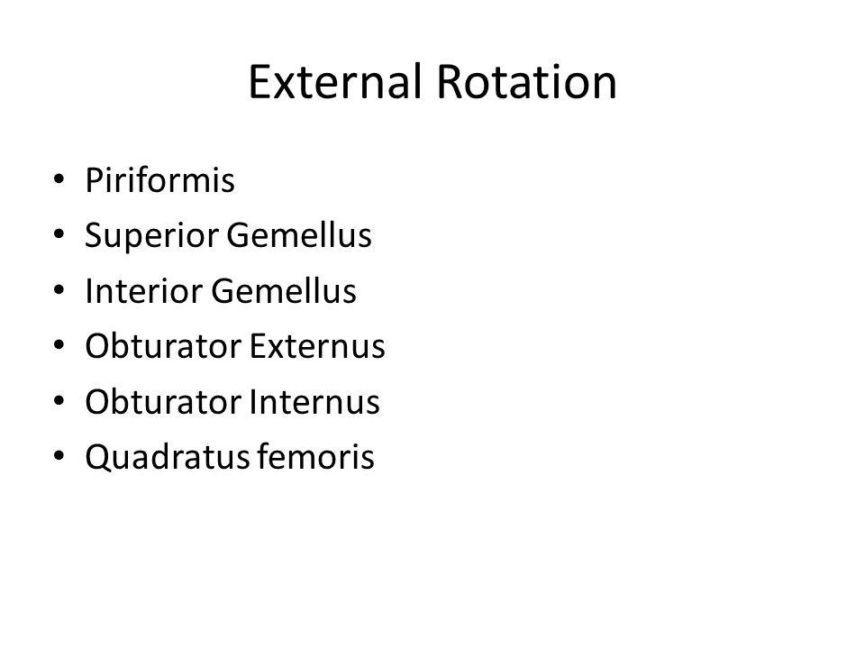 External Rotation Piriformis Superior Gemellus Interior Gemellus Obturator Externus Obturator Internus Quadratus femoris