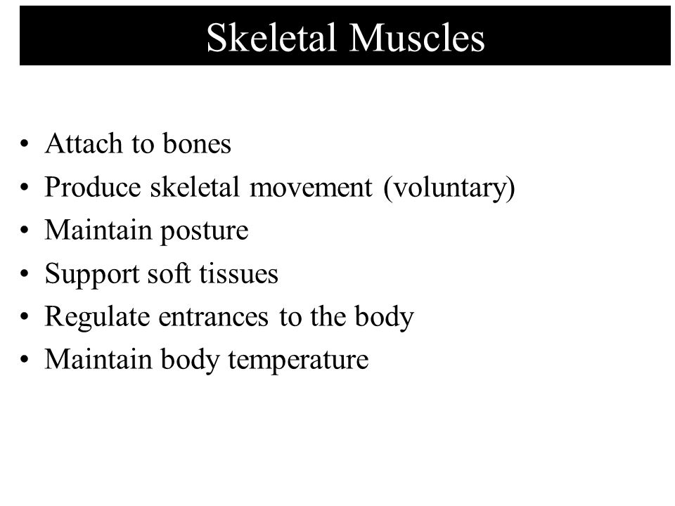 Summary: Muscle Actions at the Shoulder Joint Abduction: 1.Deltoid (middle) 2.Supraspinatus Adduction: 1.Latissimus dorsi 2.Pectoralis major 3.Coracobrachialis 4.Teres major 5.Teres minor 6.Infraspinatus Flexion: 1.Pectoralis Major 2.Deltoid (anterior) 3.Coracobrachialis Extension: 1.Latissimus dorsi 2.Deltoid (posterior) 3.Teres major 4.Triceps brachii (long) Lateral Rotation: 1.Infraspinatus 2.Teres minor 3.Deltoid (posterior) Medial Rotation: 1.Subscapularis 2.Pectoralis Major 3.Latissimus dorsi 4.Teres major 5.Deltoid (anterior) prime movers in bold