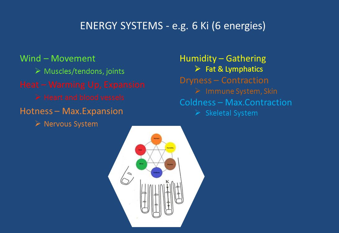 ENERGY SYSTEMS - e.g. 6 Ki (6 energies) Wind – Movement  Muscles/tendons, joints Heat – Warming Up, Expansion  Heart and blood vessels Hotness – Max