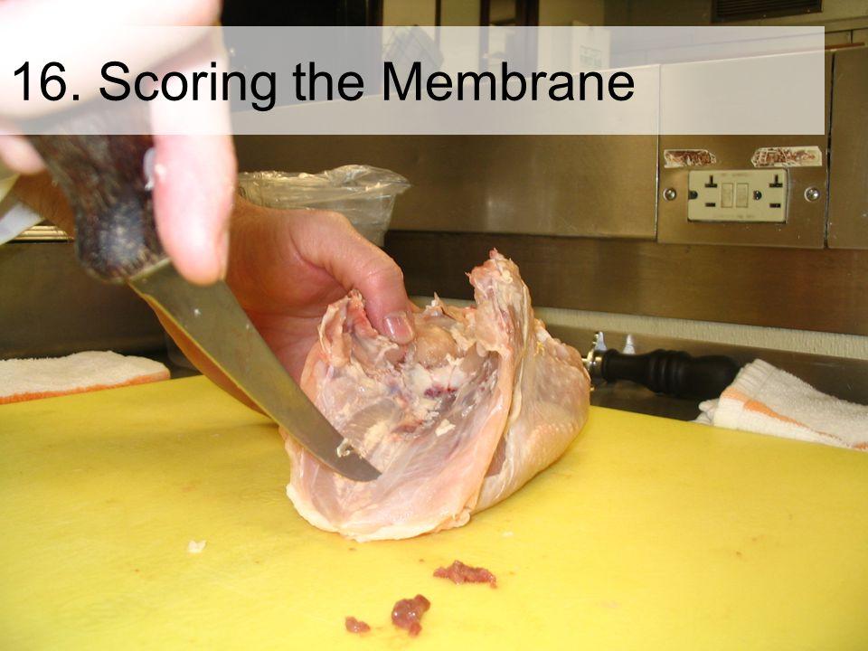 16. Scoring the Membrane