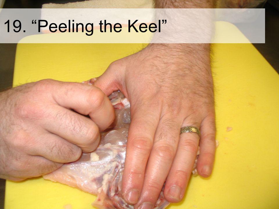 19. Peeling the Keel