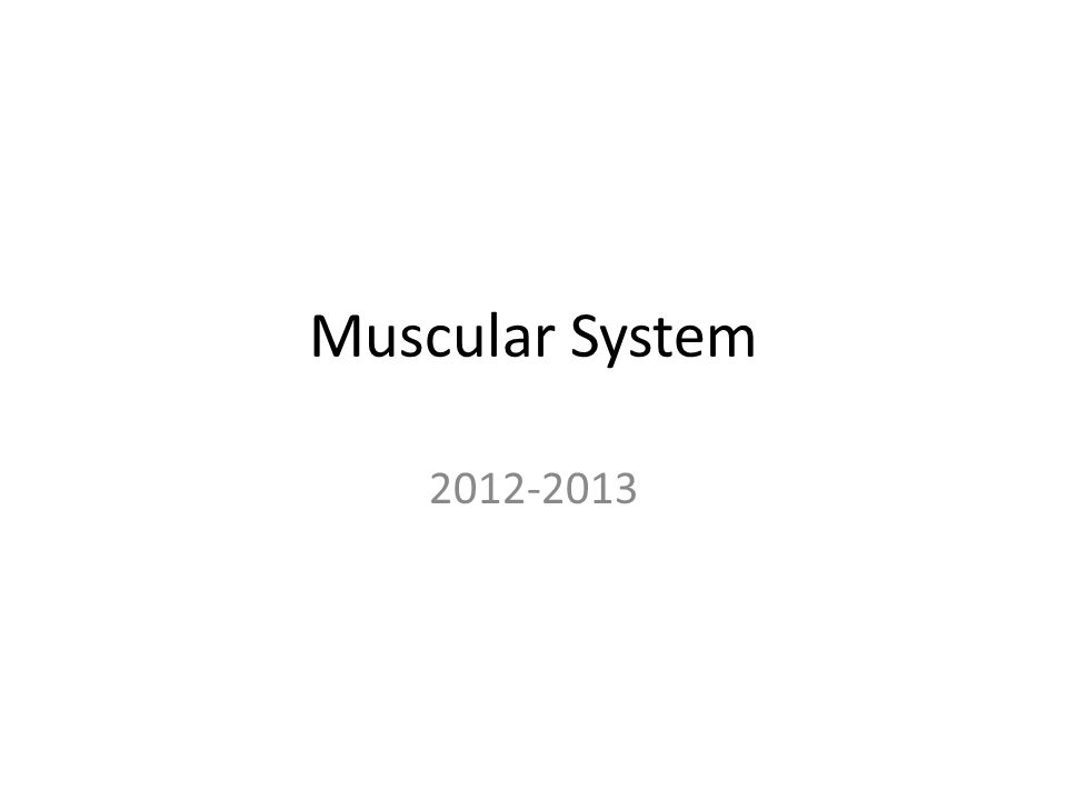 Muscles that Move the Arm Extensor – Latissimus Dorsi Origin: spines of scral, lumbar, & lower thoracic vertebrae, iliac crest, & lower ribs Insertion: humerus Action: extends, adducts, and rotates the arm medially, or pulls the should downward & back