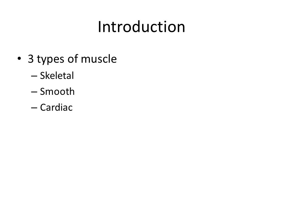 Skeletal Muscle Contraction 10 steps to muscle contraction 1.